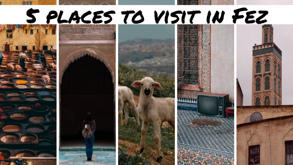 5 places to visit in Fez.png