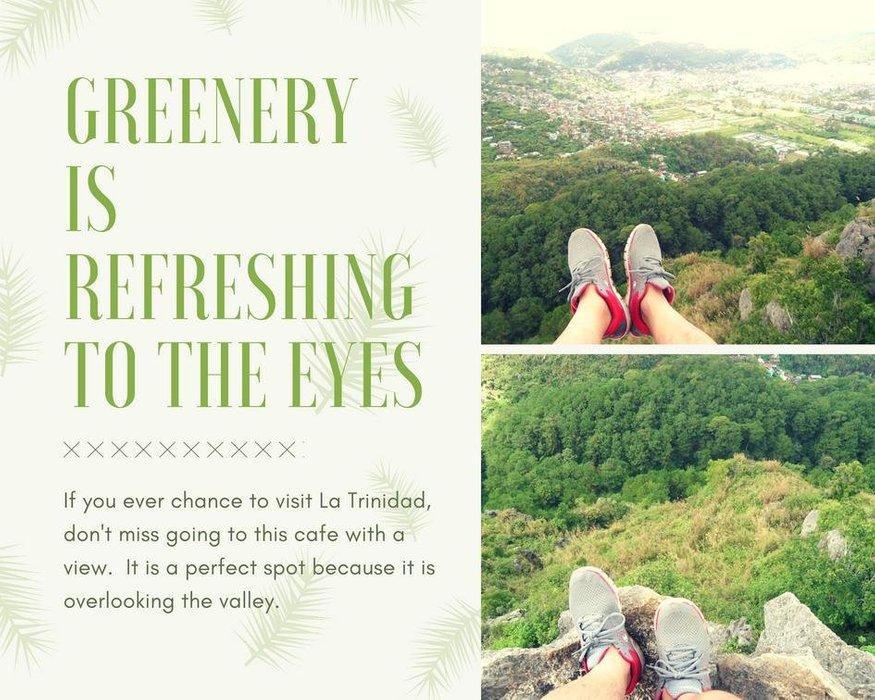 greeneryis refreshing to the eyes.jpg